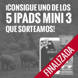 ¡Sorteamos 5 iPads mini!