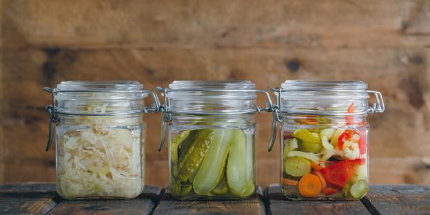 Mejora tu digestion y evita la obesidad con los probioticos