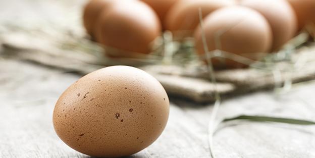 Curiosidades sobre los huevos que te interesa saber