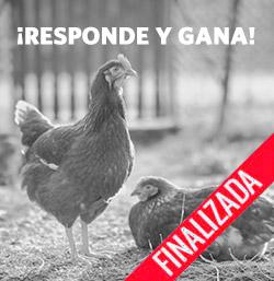 Sorteamos 30 lotes de Tortillas Palacios Receta Casera con Huevos Camperos